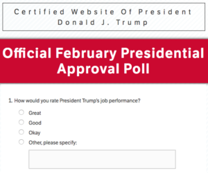 "RNC ""Satisfaction"" Poll"