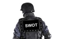 SWOT Team